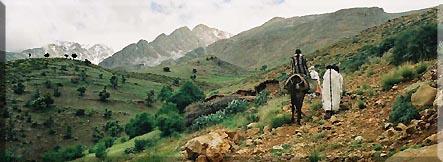 La valée d'Anergui a dos de mulet JO02%20VOYAGEURS%20AGUERD